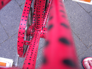 Mein über alles geliebtes Fahrrad, welches ich vor ca zwei Jahren komplett per Hand angemalt habe