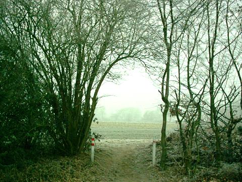 2006: Eisiges Feld... he, mein Schulweg o_O (16 Jahre alt)