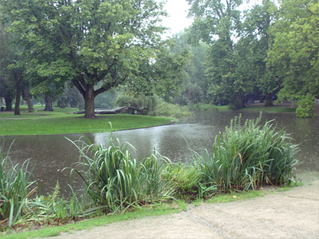 Vondelpark im Regen
