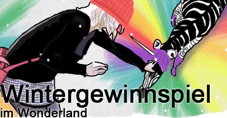 000wintergewinnspiel_wonderland13