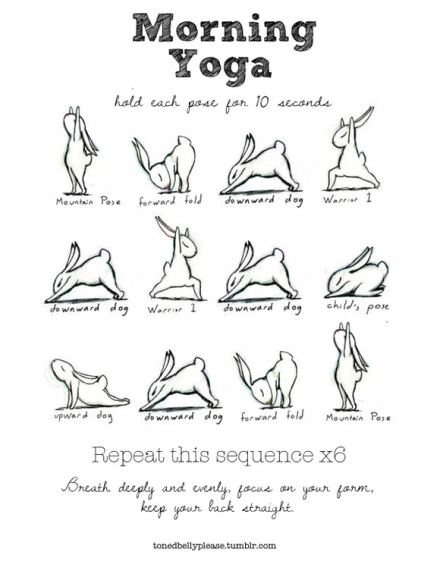 Yoga with Bunnies