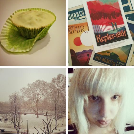 Grüner Tee-Muffin, NASA-Postkarten, Schnee und neuer Pony