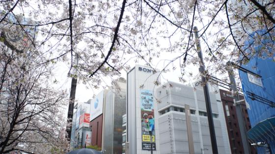 Das Sony Building, Tokyo