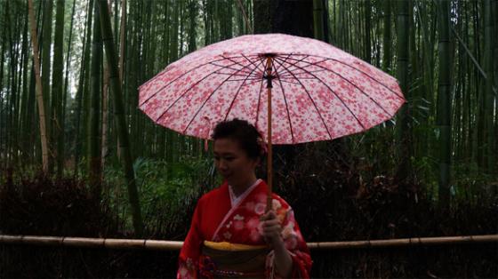 Eine Japanerin im Kimono in Mitten des Bambushains in Arashiyama, Kyoto