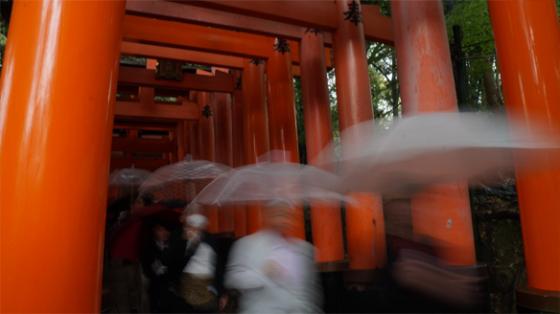 Die 1000 Torii am Inari, Kyoto