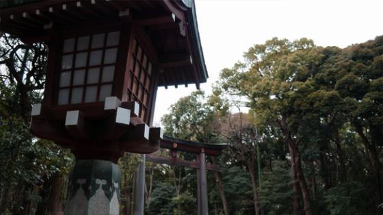 Der Yoyogi Park in Tokyo