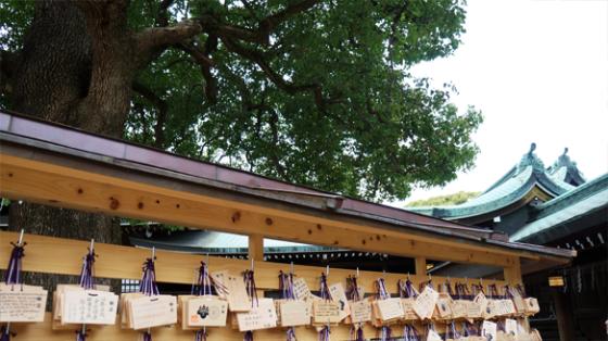 Holztafeln am Meiji Schrein