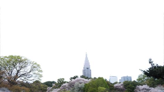 Der Gyoen Park im Herzen Tokyos.