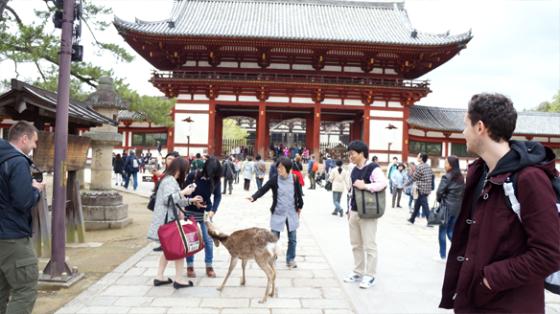 Der Tōdai-ji.