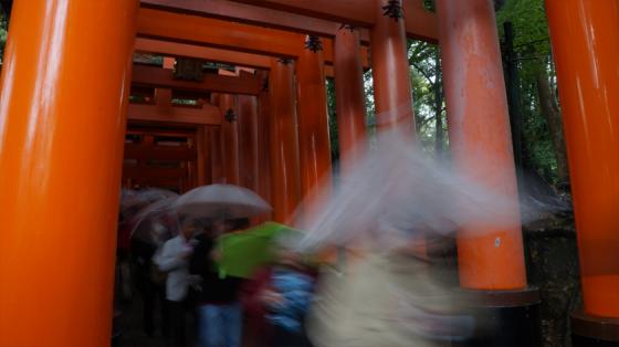 Die ersten Torii des Fushimi Inari-Taisha.