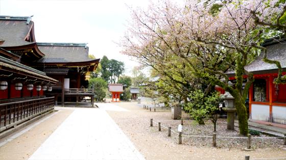 """Am nicht """"so aufregend"""" aussehenden Kitano Tenman-gū sind die Touris auch wieder verschwunden."""