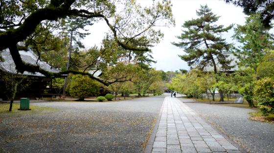 Auch im Koryu-ji ist es sehr friedlich.