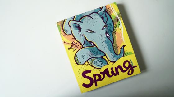 Das Cover des Spring Magazins Nummer 13 trägt, passend zum Titel The Elephant in the room, einen Elefanten auf dem Cover. Das Magazin ist im Mairisch Verlag erschienen.