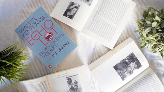 Das Echolot: ein kollektives Tagebuch von Walter Kempowski über Januar und Februar des Jahres 1943
