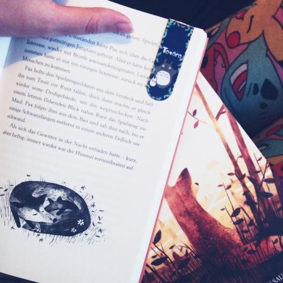 Das Jugendbuch Mein Freund Pax überzeugt durch seine wundervolle Handlung und die liebevollen Illustrationen.