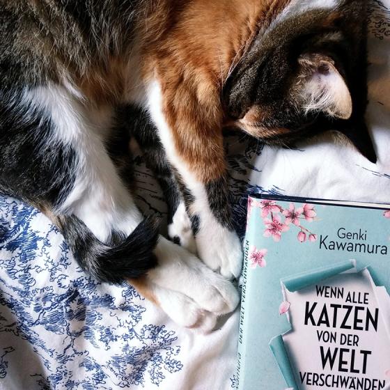 Wenn alle Katzen von der Welt verschwänden. Der neue Roman von Genki Kawamura.